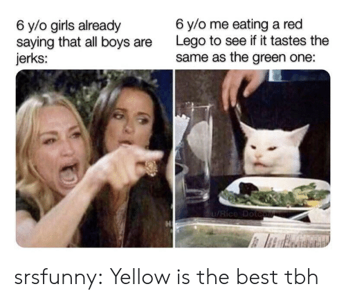 Girls, Lego, and Tbh: 6 y/o me eating a red  Lego to see if it tastes the  same as the green one:  6 y/o girls already  saying that all boys  jerks:  1/Rice Dotcute srsfunny:  Yellow is the best tbh