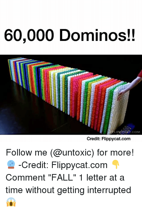 "Memes, Domino's, and Dominoes: 60,000 Dominos!  COM  Credit: cat.com Follow me (@untoxic) for more! 🔮 -Credit: Flippycat.com 👇Comment ""FALL"" 1 letter at a time without getting interrupted 😱"