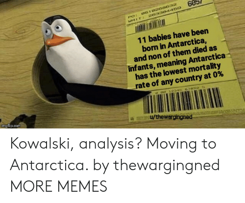 Dank, Memes, and Target: 60  061020a032  PO:  WMIT: 20330445o  11 babies have been  born in Antarctica,  and non of them died as  infants, meaning Antarctica  has the lowest mortality  rate of any count ry at 0%  c o0 12346 67890  imgflip.com  u/thewargingned Kowalski, analysis? Moving to Antarctica. by thewargingned MORE MEMES
