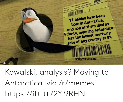 Memes, Meaning, and Antarctica: 60  061020a032  PO:  WMIT: 20330445o  11 babies have been  born in Antarctica,  and non of them died as  infants, meaning Antarctica  has the lowest mortality  rate of any count ry at 0%  c o0 12346 67890  imgflip.com  u/thewargingned Kowalski, analysis? Moving to Antarctica. via /r/memes https://ift.tt/2Yl9RHN