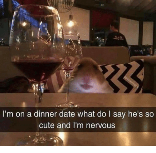 Cute, Date, and What: 64  I'm on a dinner date what do I say he's so  cute and I'm nervous