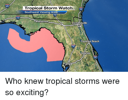 Funny, Beach, and Excite: 65  10  Tropical Storm Watch 95  Southwest Viewing Area  75  Tallahassee  Jacksonville  Daytona Beach  75  Orlando  95 Who knew tropical storms were so exciting?