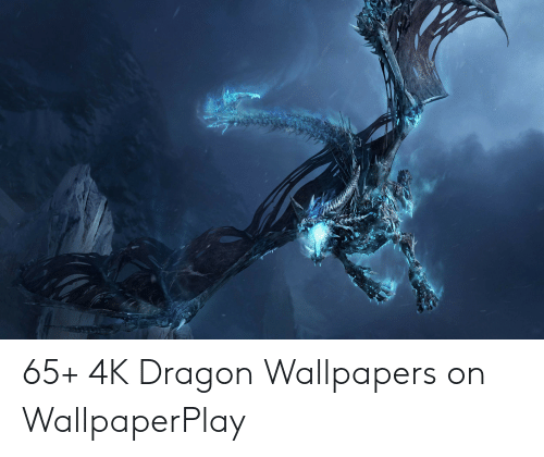 65 4k Dragon Wallpapers On Wallpaperplay Wallpapers Meme