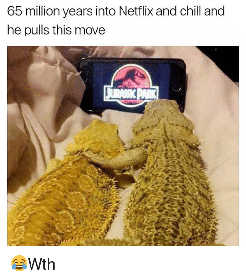 Chill, Memes, and Netflix: 65 million years into Netflix and chill and  he pulls this move 😂Wth