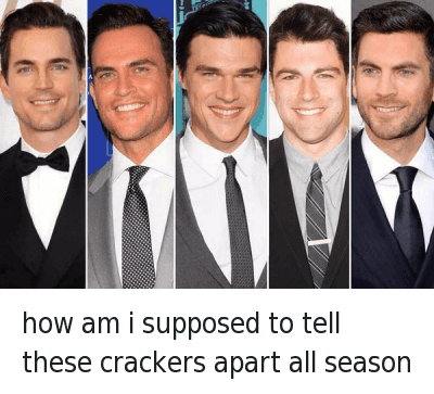 how am i supposed to tell these crackers apart all season : how am i supposed to tell these crackers apart all season how am i supposed to tell these crackers apart all season