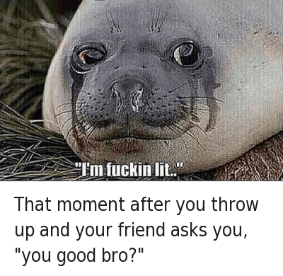 "That moment after you throw up and your friend asks you, ""you good bro?"" : That moment after you throw up and your friend asks you, ""you good bro?""   ""I'm fuckin lit.."" That moment after you throw up and your friend asks you, ""you good bro?"""