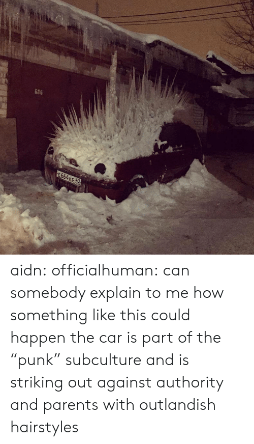 """Parents, Tumblr, and Blog: 664KE 0 aidn:  officialhuman:  can somebody explain to me how something like this could happen  the car is part of the """"punk"""" subculture and is striking out against authority and parents with outlandish hairstyles"""