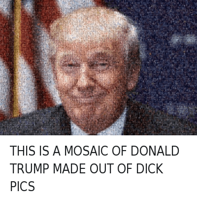THIS IS A MOSAIC OF DONALD TRUMP MADE OUT OF DICK PICS : THIS IS A MOSAIC OF DONALD TRUMP MADE OUT OF DICK PICS THIS IS A MOSAIC OF DONALD TRUMP MADE OUT OF DICK PICS