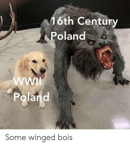 Poland, Wwi, and Century: 6th Century  Poland  WWI  Poland Some winged bois