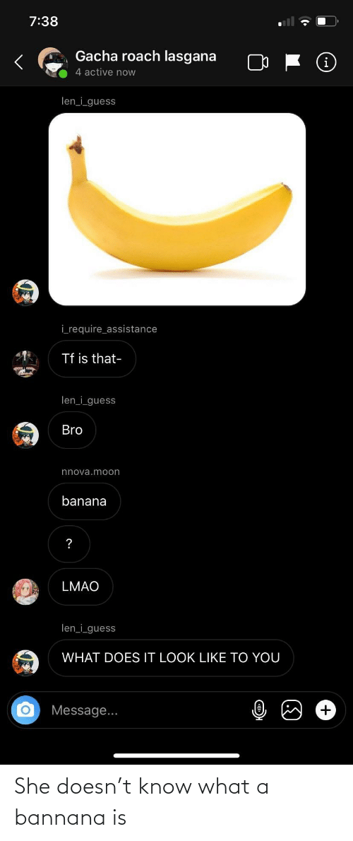 Facepalm, Lmao, and Banana: 7:38  Gacha roach lasgana  (i  4 active now  len_i_guess  i_require_assistance  Tf is that-  len_i_guess  Bro  nnova.moon  banana  LMAO  len_i_guess  WHAT DOES IT LOOK LIKE TO YOU  Message... She doesn't know what a bannana is