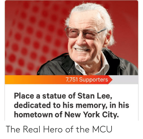 New York, Stan, and Stan Lee: 7,751 Supporters  Place a statue of Stan Lee,  dedicated to his memory, in his  hometown of New York City. The Real Hero of the MCU