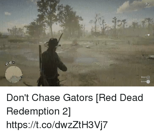 me.me: 70  STuey  GATOS Don't Chase Gators [Red Dead Redemption 2] https://t.co/dwzZtH3Vj7
