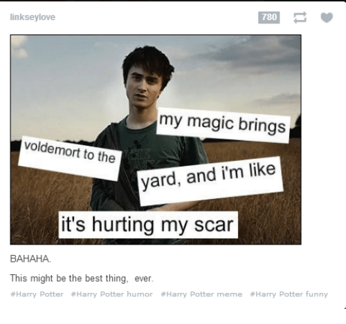 Funny, Harry Potter, and Love: 780  linksey love  my magic brings  voldemort to the  yard, and i'm like  it's hurting my scar  BAHAHA.  This might be the best thing, ever  #Harry Potter #Harry Potter humor #Harry Potter meme #Harry Potter funny