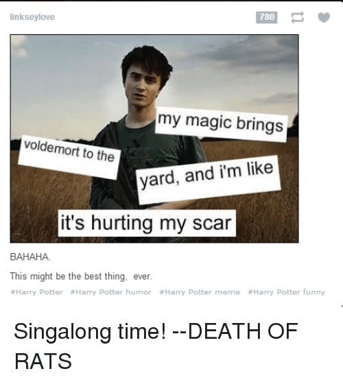 Funny, Harry Potter, and Love: 780  linksey love  my magic brings  voldemort to the  yard, and i'm like  it's hurting my scar  BAHAHA.  This might be the best thing, ever  #Harry Potter #Harry Potter humor #Harry Potter meme #Harry Potter funny Singalong time!  --DEATH OF RATS