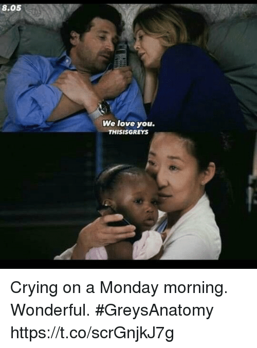 Crying, Love, and Memes: 8.05  We love you.  THISISGREYS Crying on a Monday morning. Wonderful. #GreysAnatomy https://t.co/scrGnjkJ7g