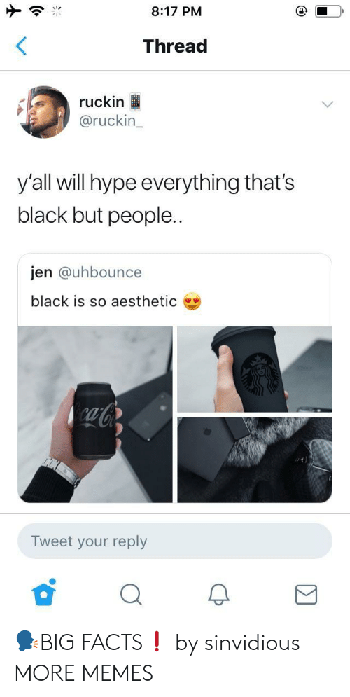 Dank, Facts, and Hype: 8:17 PM  Thread  ruckin  @ruckin_  yall will hype everything that's  black but people..  jen @uhbounce  black is so aesthetic  ab  Tweet your reply 🗣BIG FACTS❗️ by sinvidious MORE MEMES