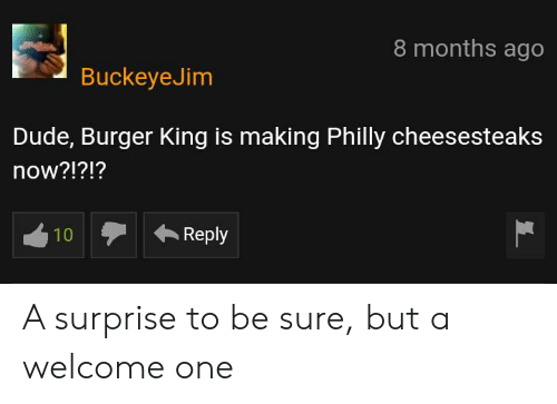 Burger King, Dude, and King: 8 months ago  BuckeyeJim  Dude, Burger King is making Philly cheesesteaks  now?!?!?  Reply  10 A surprise to be sure, but a welcome one
