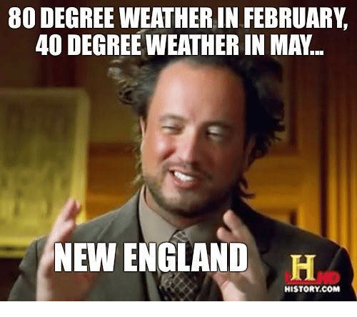 England, Memes, and History: 80 DEGREE WEATHER IN FEBRUARY  40 DEGREE WEATHER IN MA.  NEW ENGLAND  H  HISTORY COM