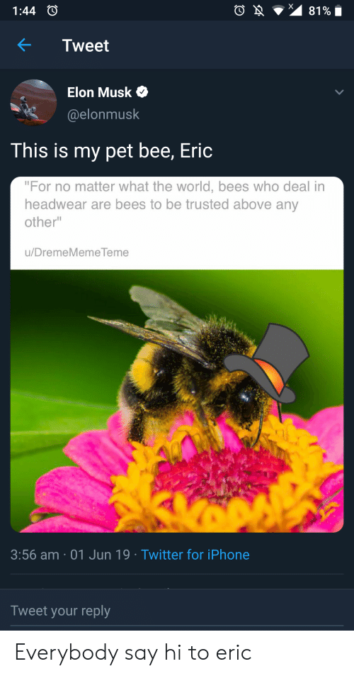 """Iphone, Reddit, and Twitter: 81%  1:44  Tweet  Elon Musk  @elonmusk  This is my pet bee, Eric  """"For no matter what the world, bees who deal in  headwear are bees to be trusted above any  other""""  u/DremeMemeTeme  3:56 am 01 Jun 19 Twitter for iPhone  Tweet your reply Everybody say hi to eric"""