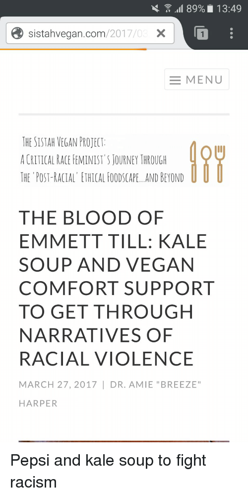 the blood of emmett till pdf