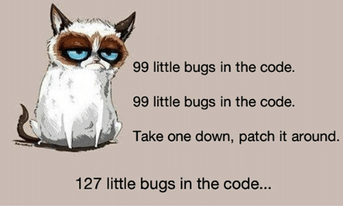 The Code Bug And Patch 99 Little Bugs In