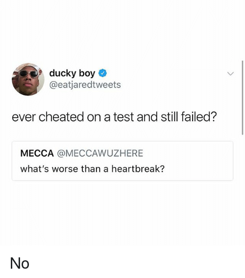 Memes, Test, and Boy: 9ducky boy O  @eatjaredtweets  ever cheated on a test and still failed?  MECCA @MECCAWUZHERE  what's worse than a heartbreak? No