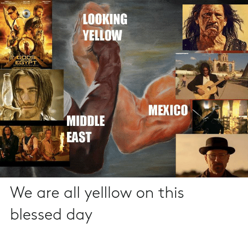 9EHAND GEAFERET NISRLAN CoOTERAGOAA LOOKING YELLOW GODS