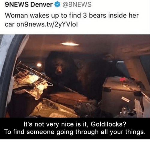 9NEWS Denver@9NEWS Woman Wakes Up To Find 3 Bears Inside