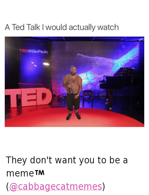 They don't want you to be a meme™ (@cabbagecatmemes): @tank.sinatra  A Ted Talk I would actually watch They don't want you to be a meme™ (@cabbagecatmemes)