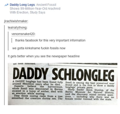 Facebook, Funny, and Sex: Daddy Long Legs  Ancient Fossil  Shows 99 Million-Year-Old Arachnid  With Erection, Study Says  jirachiwishmaker  tealrallythong:  venomsnakee 420:  thanks facebook for this very important information  we gotta kinkshame fuckin fossils now  lt gets better when you see the newspaper headline  not been Iinausea.  A DADDY legs has been found fully fossil is among the best preserved ever  aroused 99million years Experts  believe  the  harvestman  longlegs' private parts.  whose fossil was discovered in Burma  of the  encased a lump amber, died with Berlin Museum for Natura  Histo  erection while mating  They said the discovery raised  several ques-  think oozing from a tree why there  was no  entombed the creature during sex. The female spider traDDed with the male.