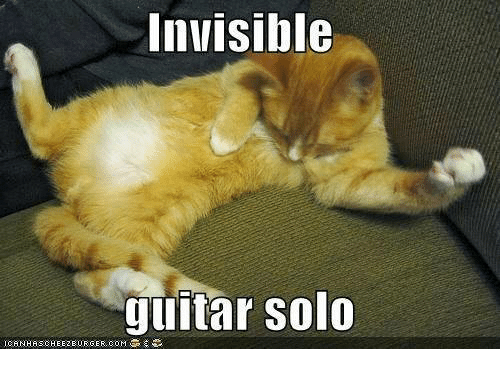 Grumpy Cat, Guitar, and Invisible: Invisible  guitar Solo  ICANHASCHEEZEURGER COMT