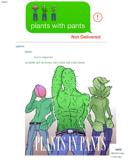 folwer m n m plants with pants not delivered japhers folwer but its