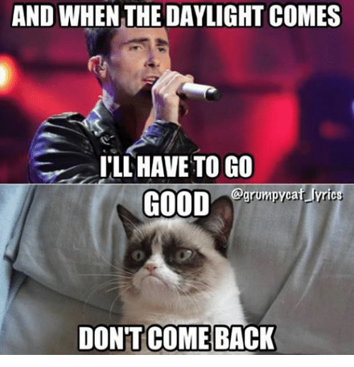 Grumpy Cat, Good, and Lyrics: AND WHEN THE DAYLIGHT COMES  ILL HAVE TO GO  grumpycat lyrics  GOOD  DONTCOME BACK