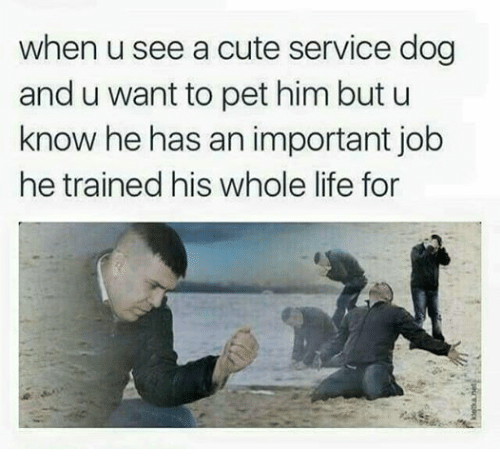 he has a job for life