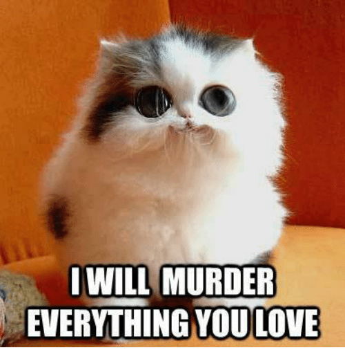 Grumpy Cat, Murder, and  Murderous: I WILL MURDER  EVERYTHING YOULOVE