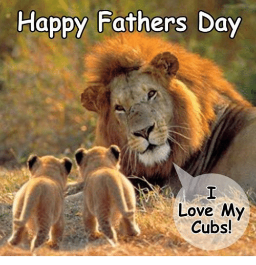 Happy fathers day love my cubs fathers day meme on me fathers day love and grumpy cat happy fathers day love my cubs sciox Gallery