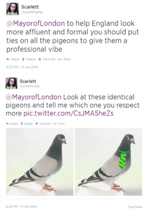 England, Funny, and Respect: Scarlett  ajunkthump  @MayorofLondon to help England look  more affluent and formal you should put  ties on all the pigeons to give them a  professional vibe  Reply Delete Favorite More  822 PM 17 Jun 2014  Scarlett  unkthump  a MayorofLondon Look at these identical  pigeons and tell me which one you respect  more pic twitter.com/CsJMA5heZs  Reply Delete Favorite  More  823 PM 17 Jun 20  Flag media