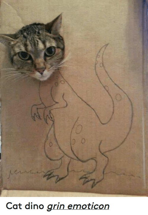 Cats, Grumpy Cat, and Cat: 0  ey  0 Cat dino grin emoticon