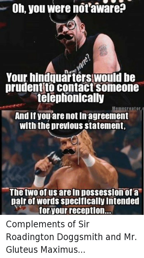 Oh You Were Not Aware Your Hindquarterswould Be Prudent To Contact