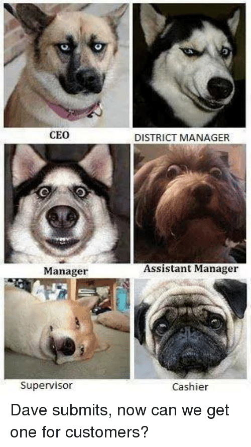 Ceo Manager Supervisor District Manager Assistant Manager Cashier