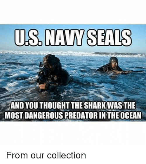US NAVY SEALS AND YOU THOUGHT THE SHARKWAS THE MOST ...