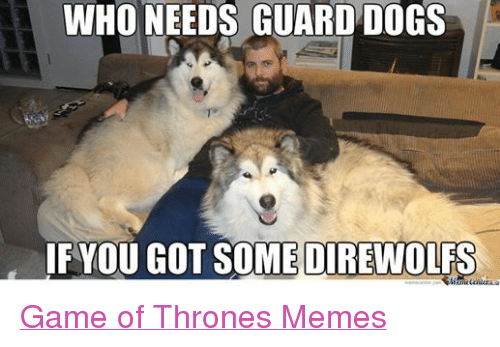 Who Needs Guard Dogs You Got Somedirewolfs Game Of Thrones Memes
