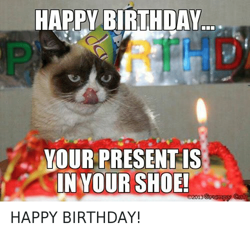 Birthday Cats And Shoes HAPPY BIRTHDAY YOUR PRESENT IS SHOE 02013