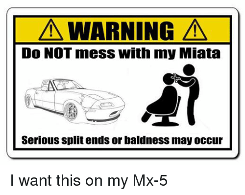 A WARNING a Do NOT Mess With My Miata Serious Split Ends or Baldness