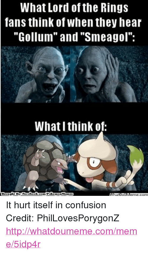 """Confused, Fac, and Meme: What Lord of the Rings  fans think of When they hear  """"Gollum"""" and """"Smeagol"""":  What I think of:  Brought By: Fac  ebook  WPalke  morn Memes It hurt itself in confusion Credit: PhilLovesPorygonZ http://whatdoumeme.com/meme/5idp4r"""