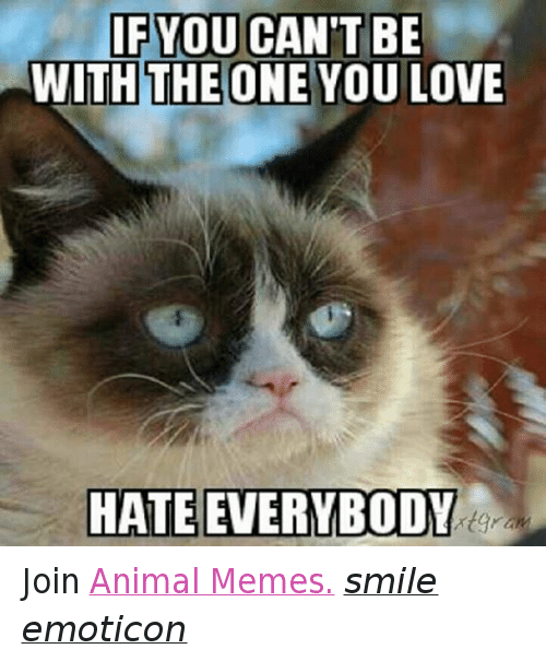 hate everybody