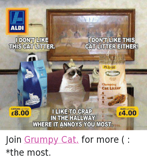 Facebook Join Grumpy Cat for more 173eed aldi idont like this idontolike this cat litter cat litter either