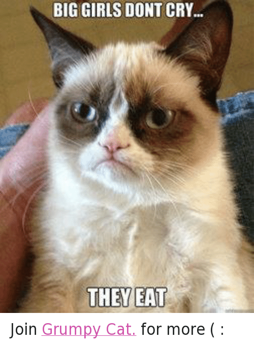 Cats, Crying, and Grumpy Cat: BIGGIRLS DONT CRY...  THEY EAT Join Grumpy Cat. for more ( :