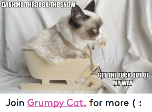 DASHINGTHROUGH THE SNOW THE FUCK OF OUT MY WAY Join Grumpy Cat for ... 51d1ad83eab5