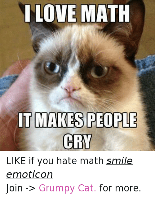 do you hate math I hate maths with a passion hate is a strong word but if it were possible to commit hate crime against algebra, i would do so.